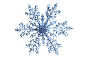 snow flake compressed