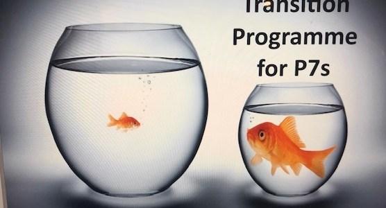 P7 Parents/Guardians- Transitioning Workshop
