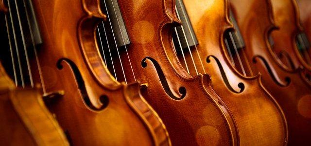 P5 + P6 Violins