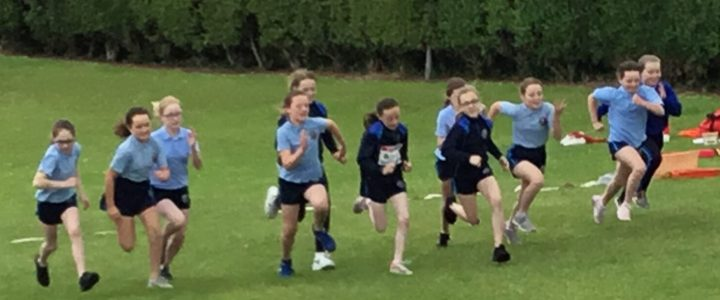 P6 Sport's Day Action!