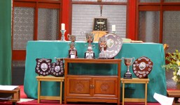 Cups and Shields