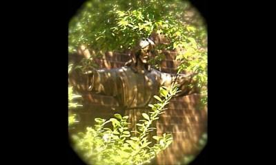 Memorial_Garden_1