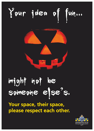 66342 Youth halloween