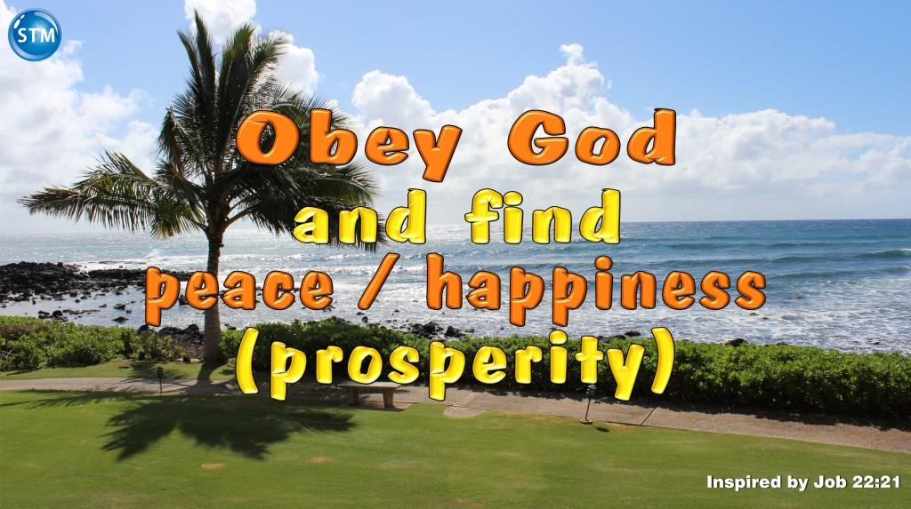 Prosperity, 7 Simple Lessons On True Wealth God's Way