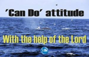 Picture of hump back whale for the spiritual attitude bs