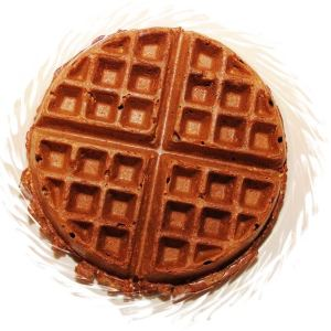 picture of whole grain waffles