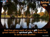 picture for spiritual gifts - fairmont park, riverside, ca