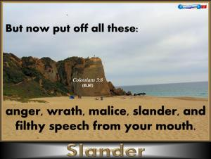 picture for slander - point dume state beach