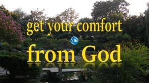Picture of a garden for the comfort from god Bible study