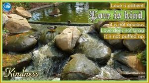 Picture of pond waterfall for the kindness Bible study 1 Corinthians 13:4