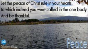 Picture of lake in the park for the peace bible study Colossians 3:15