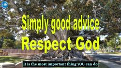 Picture of a big tree for the respect God bible study from Ecclesiastes 12:13 (ERV)