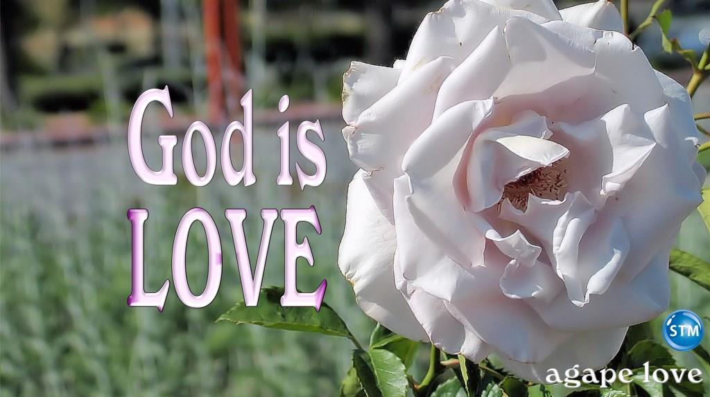 Agape Love; the Genuine Love of God is True Love
