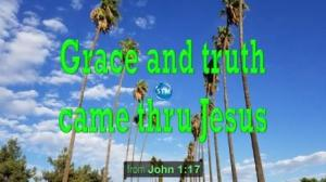 Picture of a row of palm trees for the truth bible lesson John 1:17