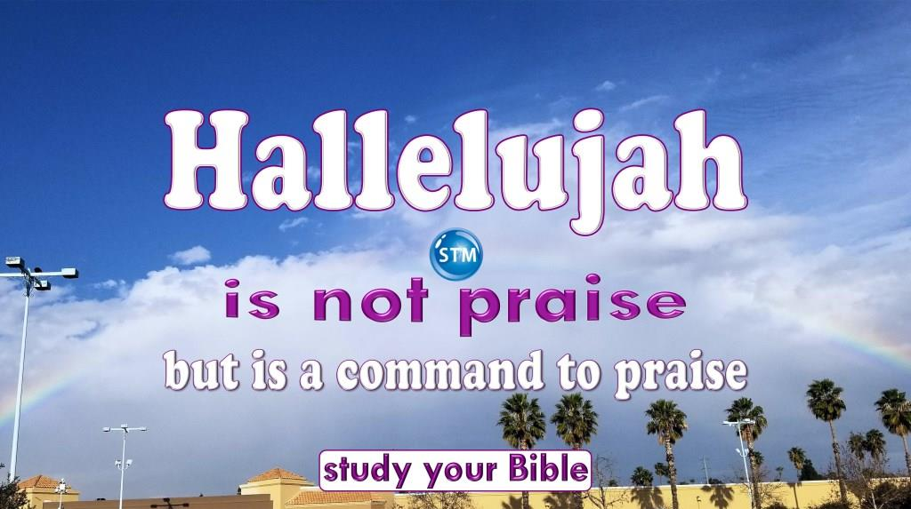 3 True Facts About Hallelujah That'll Change Your Praise