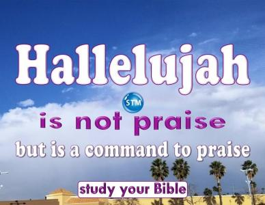 Hallelujah, Is It The Highest Praise?