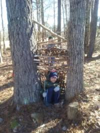 boys tree house 4