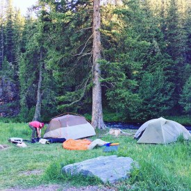 Thrilled to find a beautiful campground.