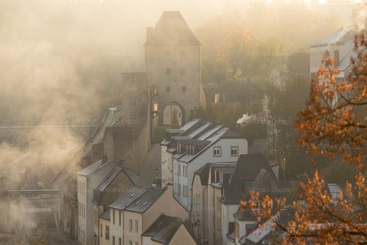 Foggy morning at Rham Plateau Luxembourg city