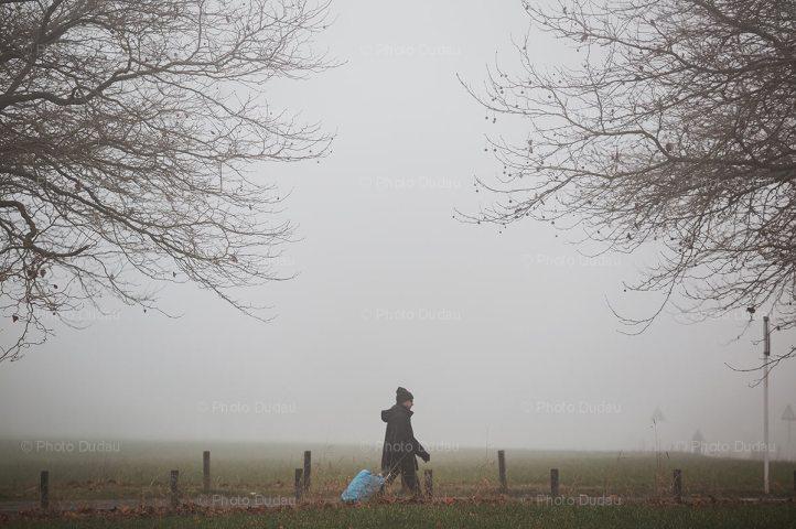 Late autumn foggy morning