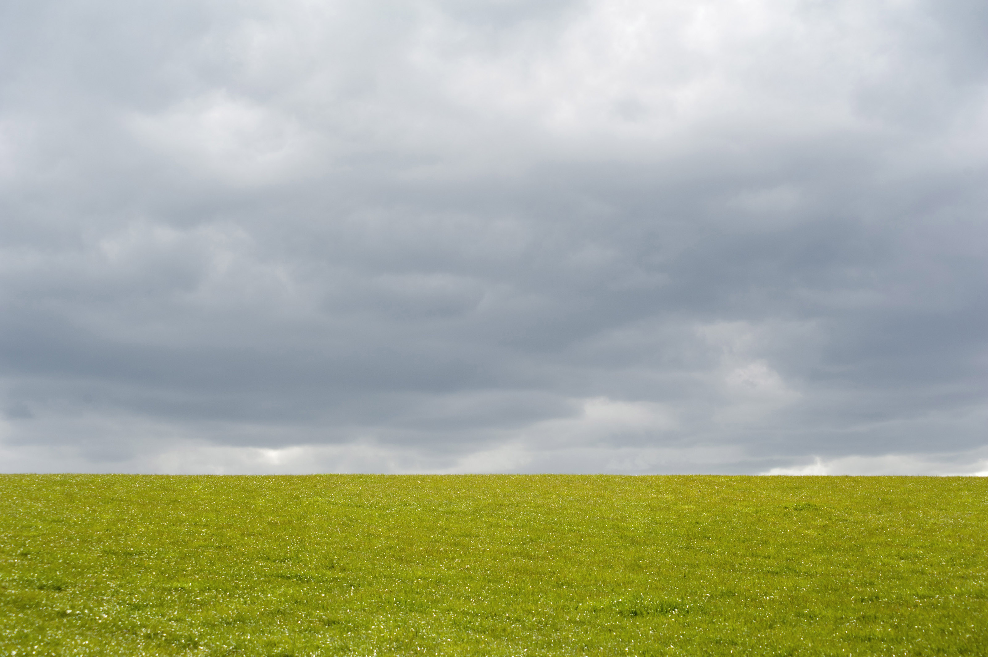 Image result for empty field