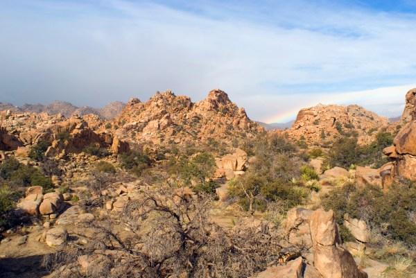 colorful desert landscape-4801