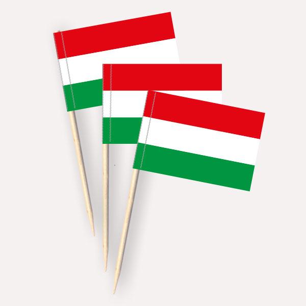 Käsepicker Ungarn | Minifahnen Zahnstocherfähnchen