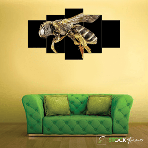 Canvas Print Split Panels (5 in 1) – Big Bug