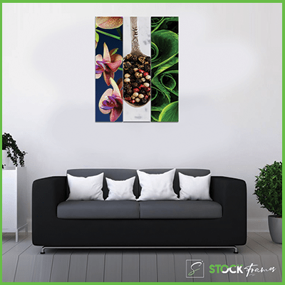 Canvas Prints nigeria