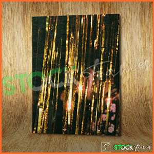 Canvas Prints Single Panels (Night Life) – 18×24, 40×40, etc.
