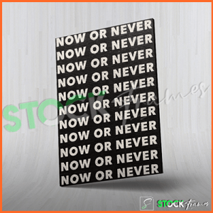 Canvas Prints Single Panels (Now or Never) – 18×24 etc.