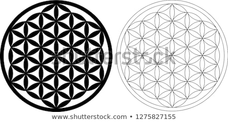Flower of life vector illustration © Elitsa Lambova (elly
