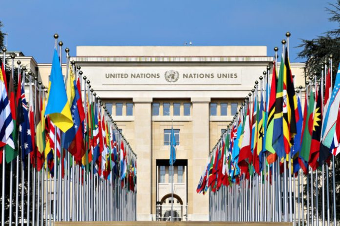Vague terrorism charge used to target supporters of the Gülen movement: UN special rapporteurs 21