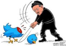 Twitter bird gets killed