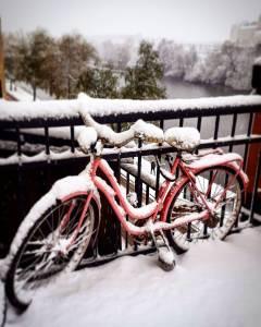 Первый снег в Стокгольме в 2017