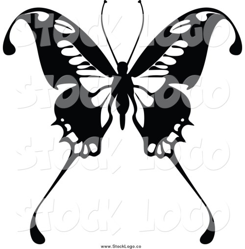 small resolution of butterfly black and white butterfly clip art black and white butterfly clipart