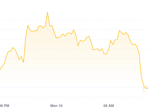 Market Wrap: Bitcoin Rally Expected to Pause