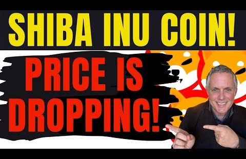 SHIBA INU COIN – PRICE IS DROPPING HARD! FIND OUT WHAT IS GOING ON RIGHT NOW!