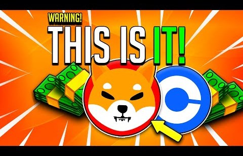 IF YOU HOLD JUST 10,000,000 SHIBA INU YOU NEED TO KNOW THIS!  – MASSIVE BURN REVEALED! – Surge Inu