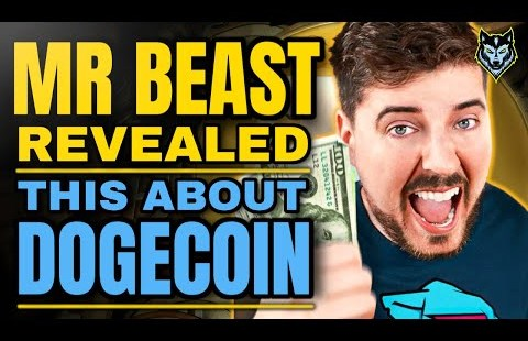 Great Dogecoin Recordsdata At the present time (MrBeast DOGECOIN Pump)