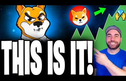 SHIBA INU COIN HOLDERS: HUGE UPDATE! GET READY FOR THIS BIG AMA! 🚀 SHIBA INU TOKEN NEWS TODAY! 🚨