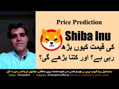 Why Shiba Inu Label is Going UP Label Predictions BTC ETH