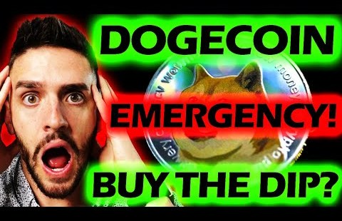 DOGECOIN EMERGENCY VIDEO! BUY THE DIP!? RIGHT NOW!? #doge #snl #elonmusk