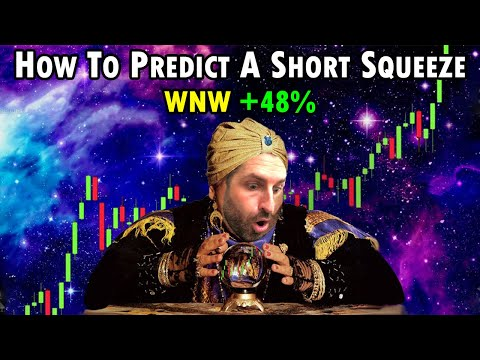 Wednesday's Inventory Market & Trading Recap – How To Predict A Short Squeeze +forty eight% #WNW #ABNB #EQOS