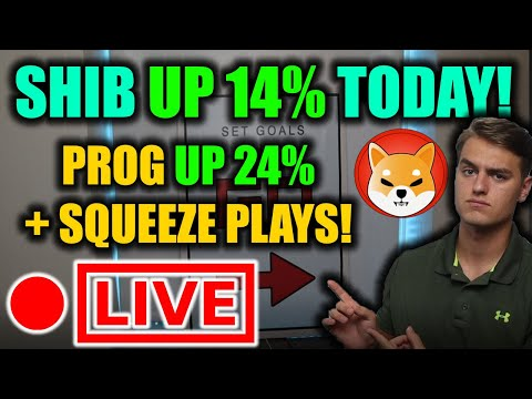 SHIB SURGES EARLY TODAY! PROG Stock Up BIG! Looking at Squeeze Performs BBIG, DATS, AMC, FAMI ATER + MORE