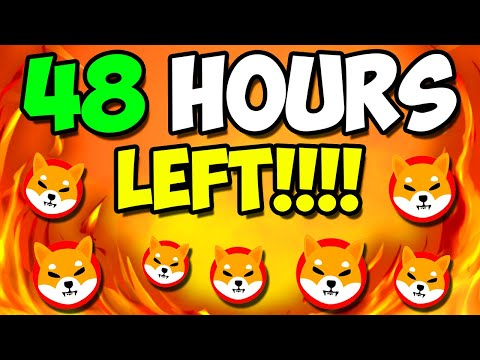 SHIBA INU ARMY: LAST Forty eight HOURS FOR A MILLIONAIRE PRICE PUMP! – EXPLAINED