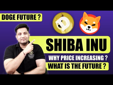Shiba Inu – Why trace rising ? Invest or No longer ? When Doge coin will pump | Bull Creep 2021