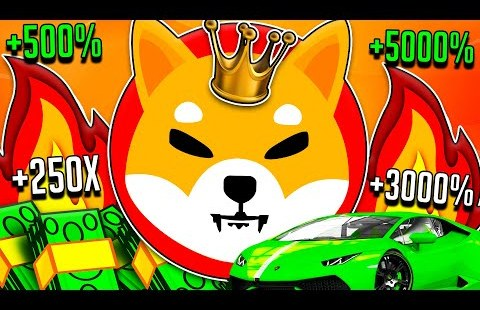 SHIBA INU COIN IT'S HAPPENING NOW! RUMOURS FINALLY CONFIRMED! – APPLE CEO BACKS CRYPTO!