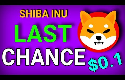 LAST CHANCE! SHIBA INU PRICE CAN HIT 0.1   WHEN TO BUY SHIBA INU   SHIBA INU SHIB NEWS TODAY