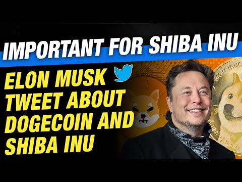 Elon Musk Tweet about Dogecoin and Shiba INU | Well-known for Shiba INU
